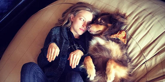 13 Reasons Dog People Are Better Than Cat People