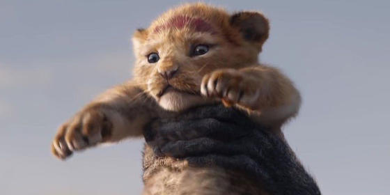The Lion King' Live-Action Remake Trailer Is Here, And Twitter Is Losing It