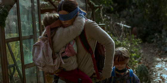 """Having A Bad Day? These Memes Inspired By Netflix's """"Bird Box"""" Are Here To Help"""