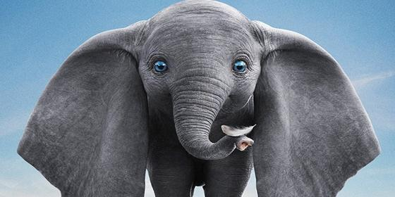 Here's All We Know About The Live-Action Remake of Dumbo