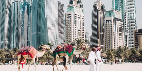 Things To Do In Dubai When It's Way Too Hot Outside