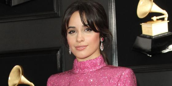 Camila Cabello Clapped Back At Body Shaming Trolls With A Powerful Message