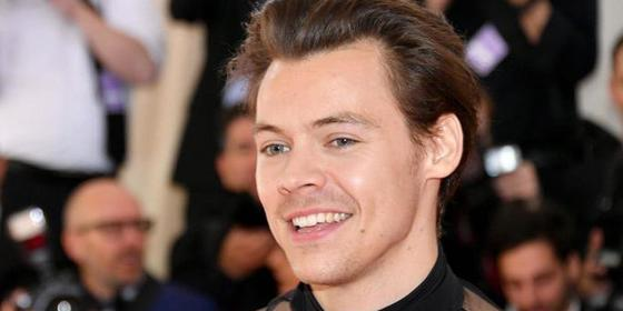 Harry Styles Reveals His Ex-Girlfriend's Voice Features On His New Album
