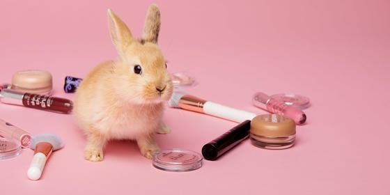 essence just made vegan beauty so much easier!
