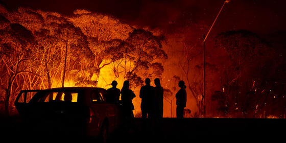 Everything To Know About The Australia Bushfire And How You Can Help