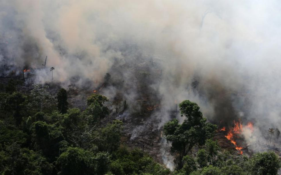 The Amazon Rainforest Fire Has Been Burning For THREE Weeks!