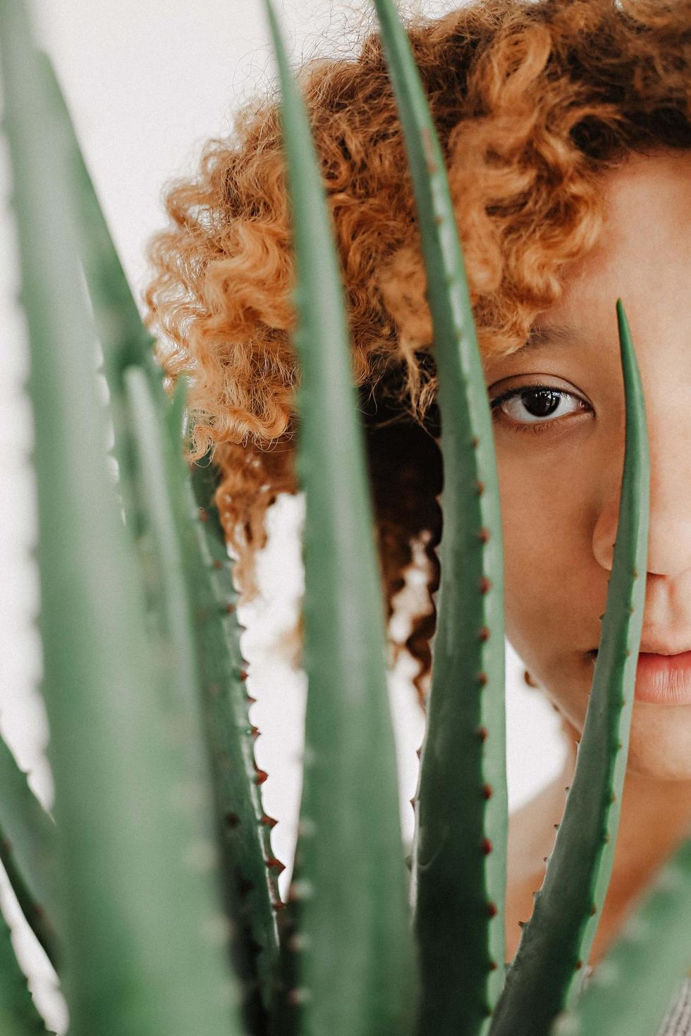 Aloe Vera for Hair: What's Fact and What's Fiction